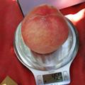 严格把控每个桃子的质量